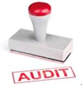network audit